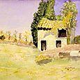Mustard Field Provence