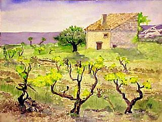 08KE_CHATEAUNEUF_OLD_VINES