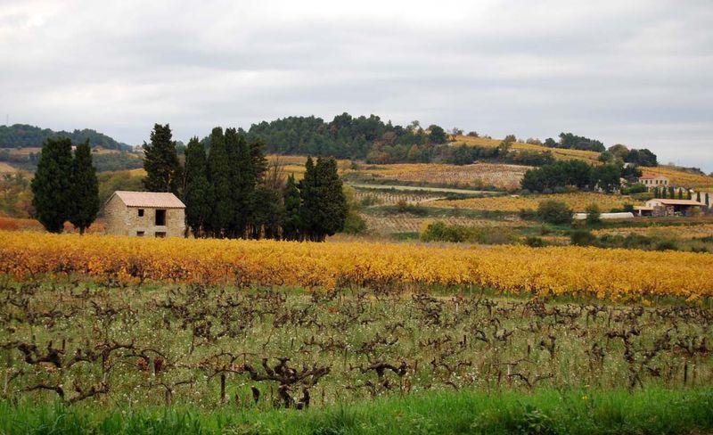 Autumn-cabanon