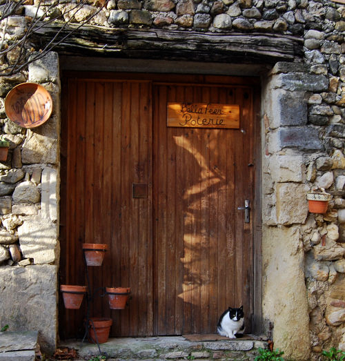 A cat and a potter in Visan (c) Kristin Espinasse