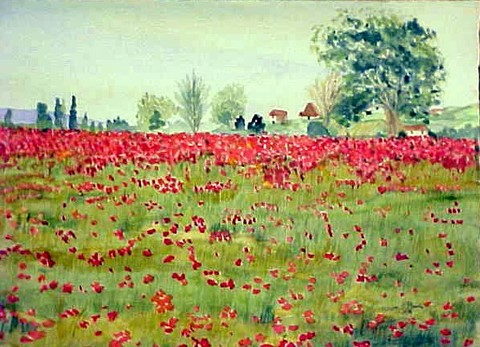 08_KE_PROVENCE_POPPIES