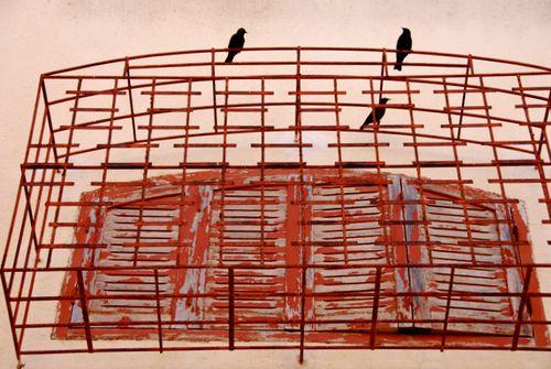 Wings & Bars (c) Kristin Espinasse