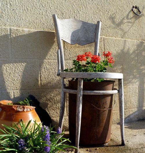Sicilian Seat with Geraniums (c) Kristin Espinasse