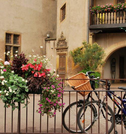 Life in Colmar (c) Kristin Espinasse
