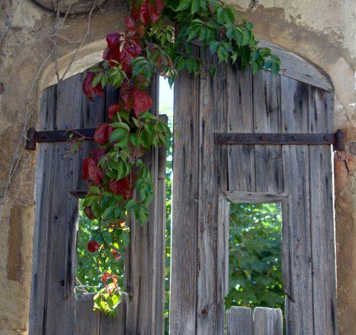 """""""Window Door"""" (c) Kristin Espinasse"""