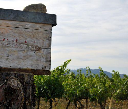 beehive mailbox (c) Kristin Espinasse boite à lettres fait d'une ruche