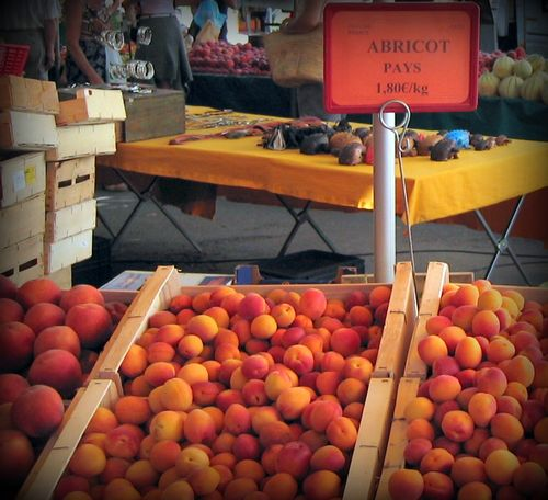 abricot or apricot (c) Kristin Espinasse