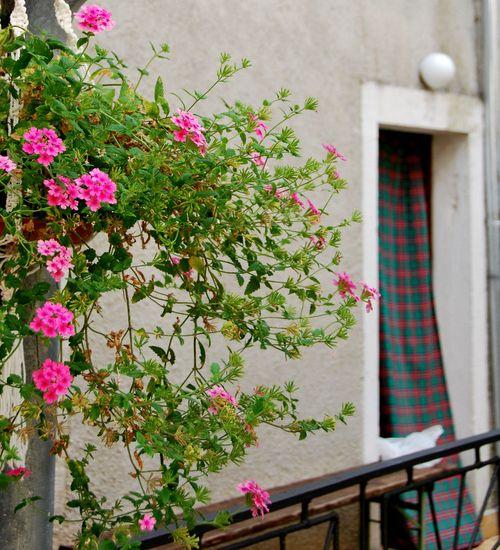 Madras door curtain in Croation (c) Kristin Espinasse