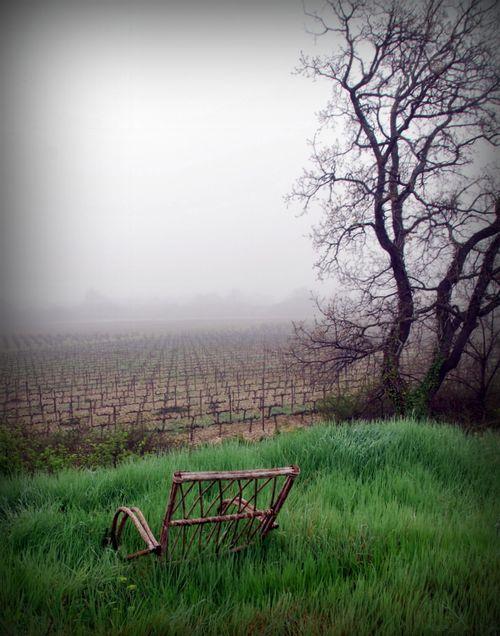 """Lawn Chair (c) Kristin Espinasse"
