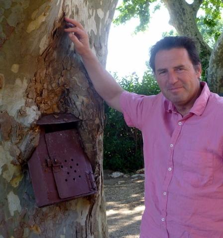 mailbox in tree (c) Kristin Espinasse boîte à lettres dans un arbre