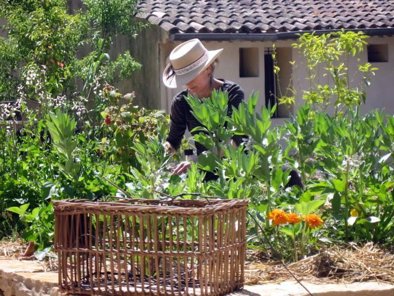Working-in-garden
