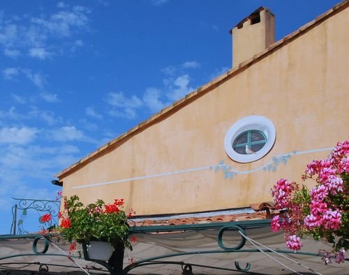 Dove and trompe l'oeil in Sanary sur mer (c) Kristin Espinasse