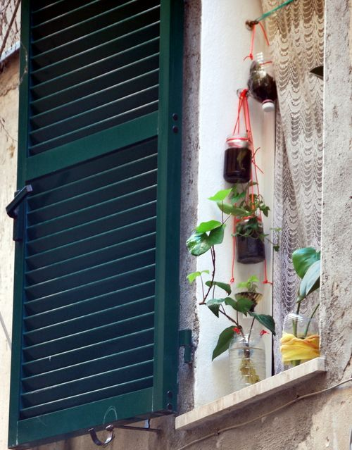 Plants and lace and charming Italian window (c) Kristin Espinasse