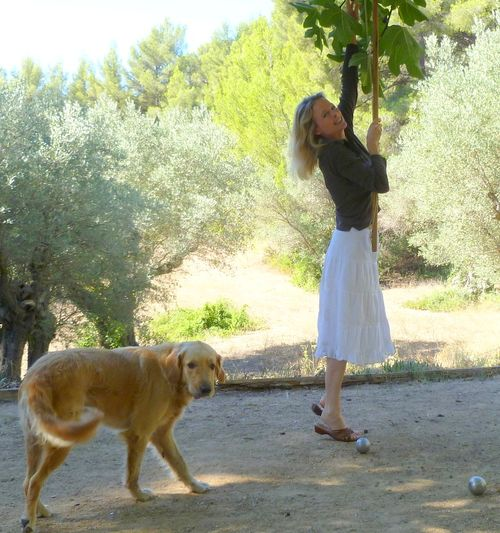 Kristin Espinasse with Smokey, Fig tree, Olive Grove, boules or petanque court (c) Jules Greer