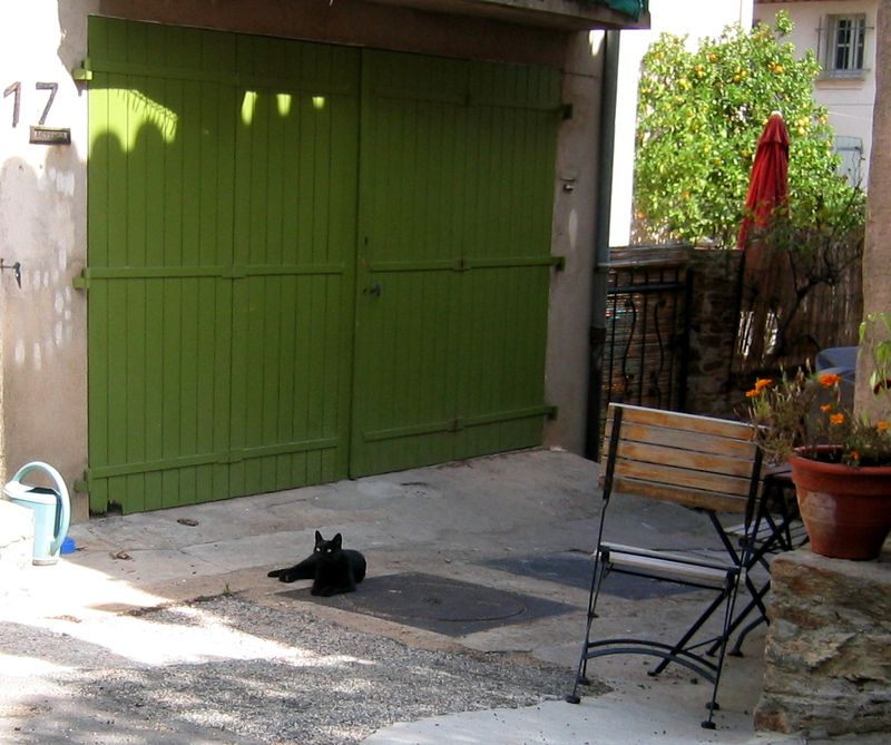 Black cat in Grimaud (c) Kristin Espinasse, French Word-A-Day.com