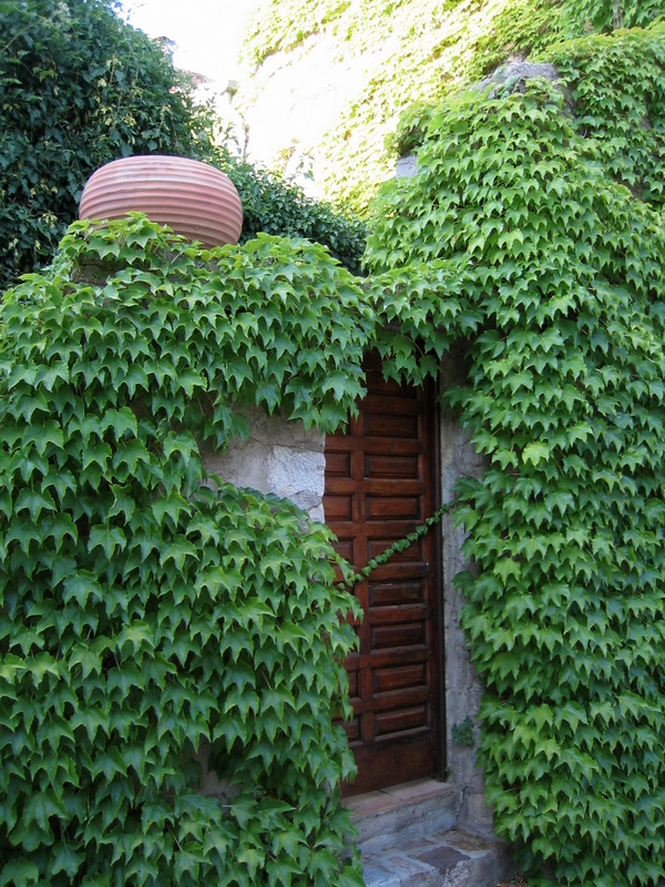 Door and pot in Le Vieux Cannet des Maures (c) Kristin Espinasse