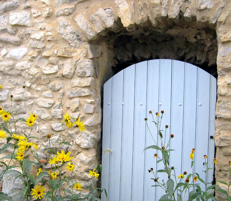 1-yellow flowers blue door