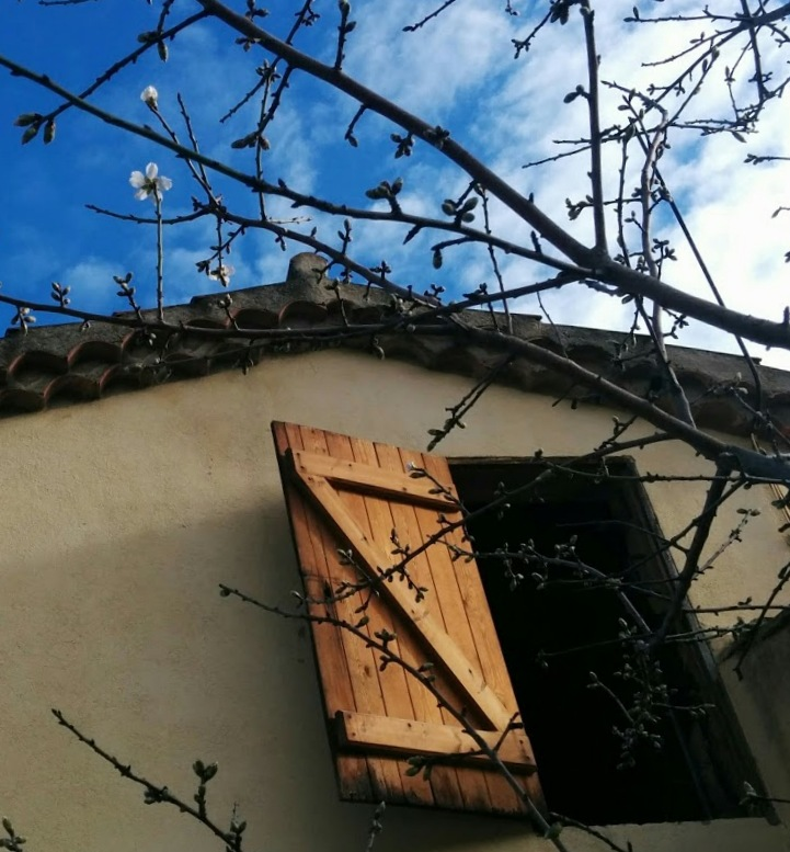 1-blue sky