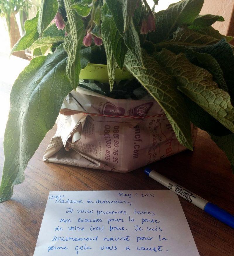 Letter of sympathy
