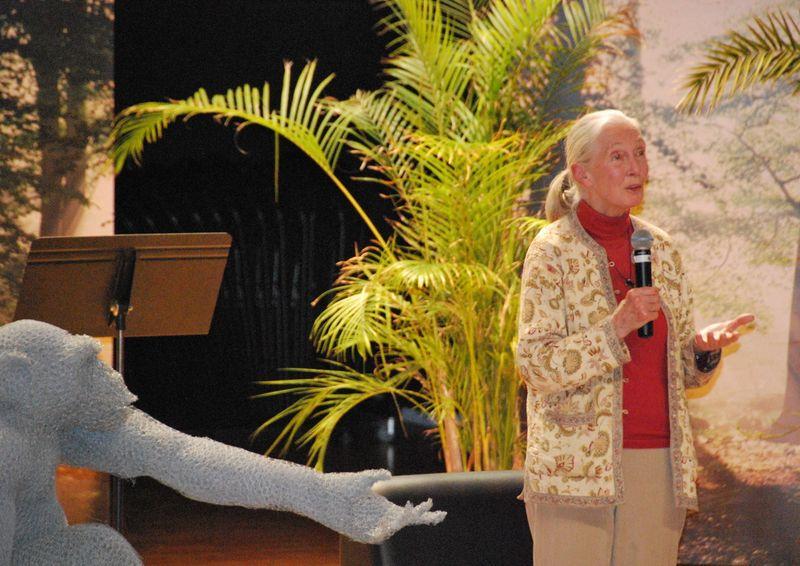 Jane-Goodall-Aurelien-Raynaud-sculpture