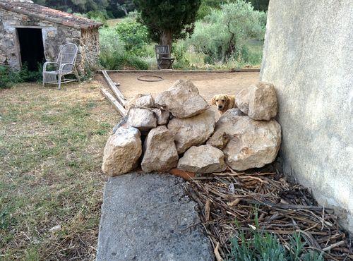 Smokey and rock wall