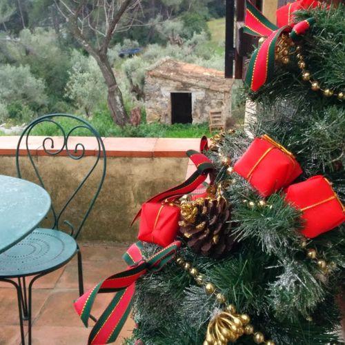 Christmas tree sapin
