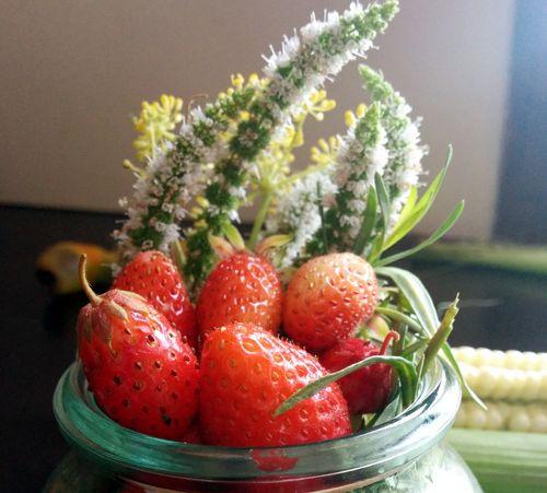 Strawberries or fraises