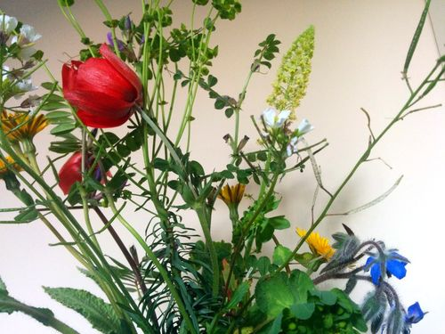 First-wildflower-bouquet