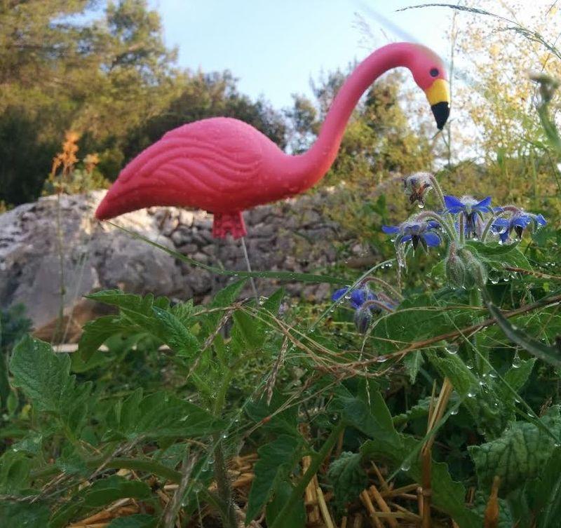 1-pink-flamingo-bourrage