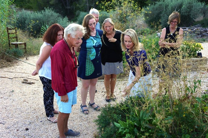MDB-winetasting-garden-herbs