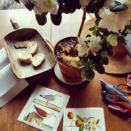 Still-life-dining-table