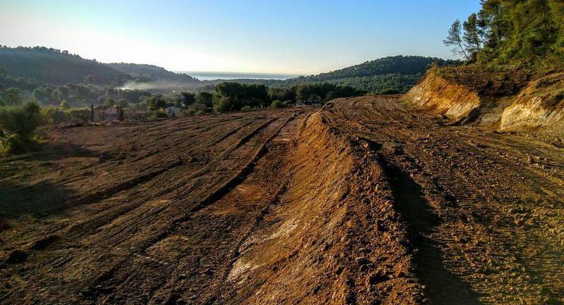 Vineyard-landscape