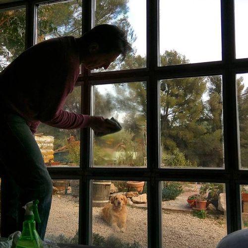 Window-washer