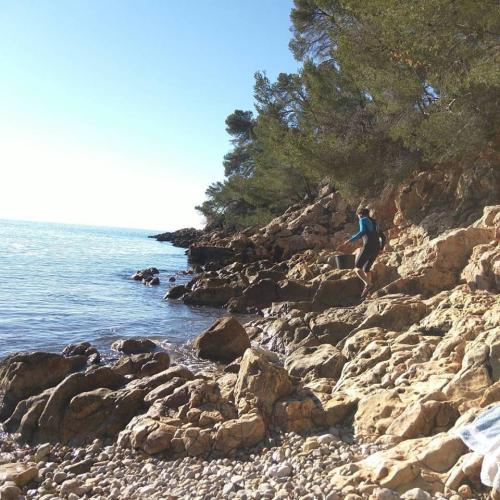 wetsuit rocky calanque sea Jean-marc-harvesting-sea-urchins
