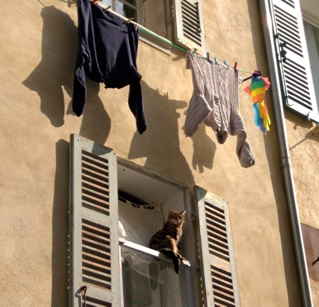 La Ciotat, hanging laundry, rainbow flag, fish, cat, window shutter