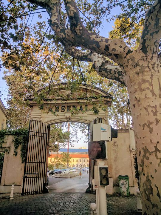 Beaux Arts school in Toulon
