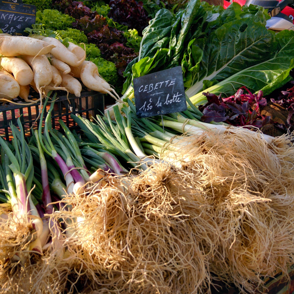 Cebette onions sold by the bunch or la botte at farmers market st cyr-sur-mer