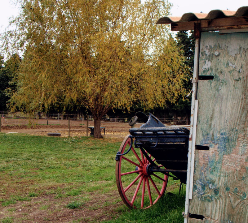 Tulette France old cart and wheel patina shed corrugated roof fall autumn french antique