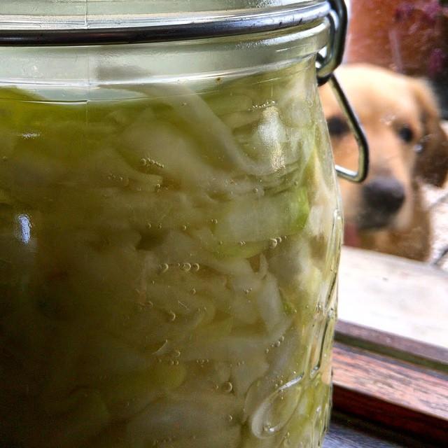 Smokey homemade sauerkraut