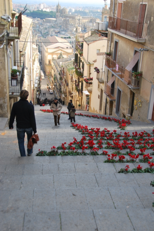 Jean-Marc and cyclamen steps in Sicily