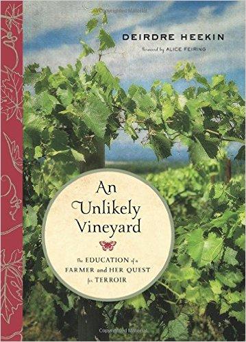 An-unlikely-vineyard