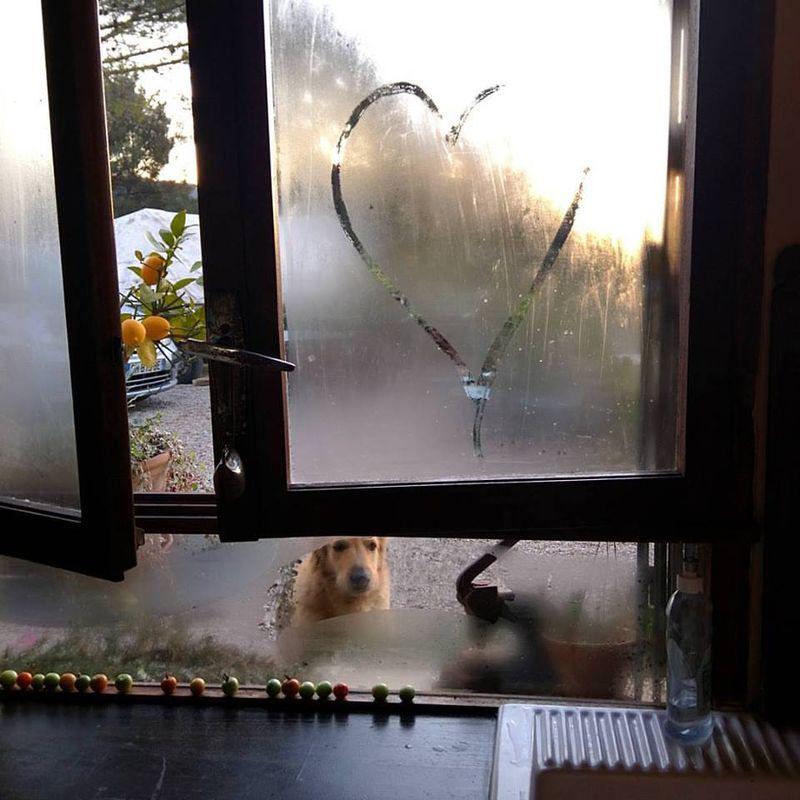 Smokey-heart-window
