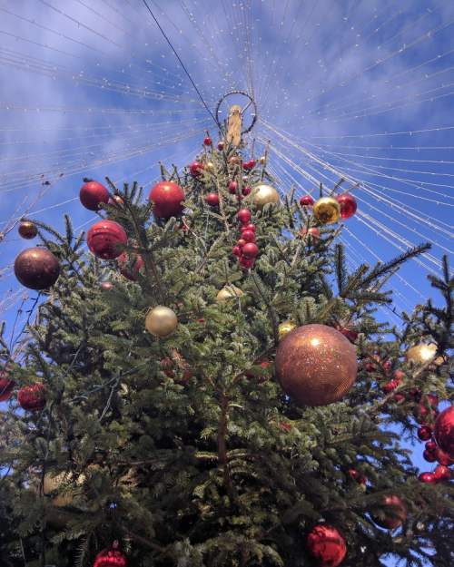 christmas tree ornaments in Cassis south of france