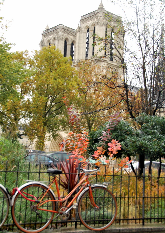 bicycle across from Notre Dame and in front of Shakespeare and company bookshop in Paris France