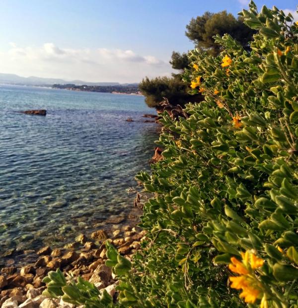 Mediterranean sea in La Madrague St Cyr-sur-Mer Les Lecques