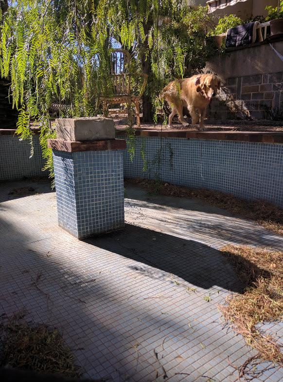 Le petit bassin and Smokey