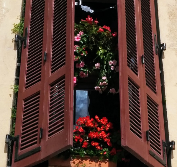 Flowers and volets or wooden shutters in Cassis France