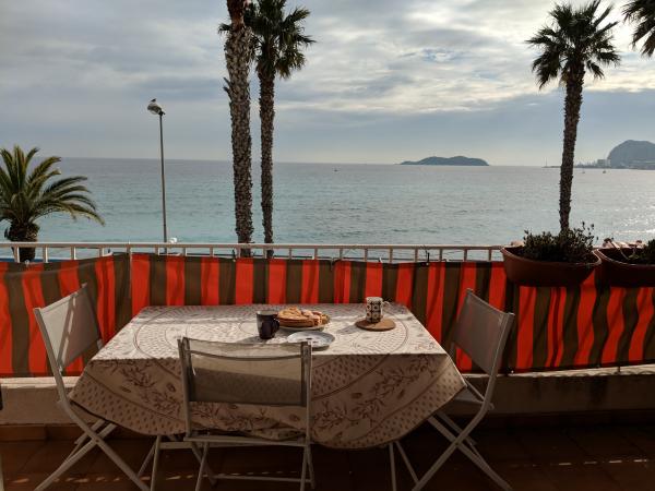 Macarons la ciotat  mediterranean sea palm trees shipyard