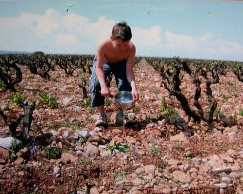 Max-watering-vines