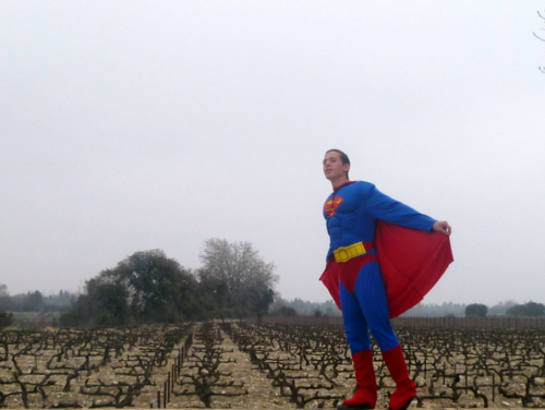 superman in french or in france and vineyard